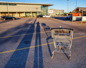 wbshadow-and-grocery-cart