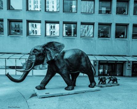 wbTembo-Mother-of-Elephants