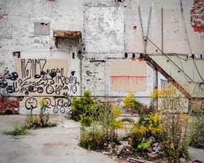Urban Ruins