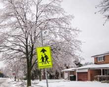 Cross Walk Sign After the Ice Storm