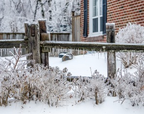 fence after Ice storm