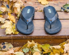 Sandals at Rest in Autumn