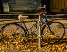 wbparked-bike-in-autumn