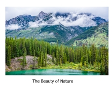 wbbeauty of nature