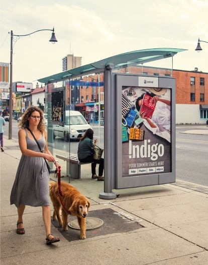 wbdog-walking-past-bus-shelter